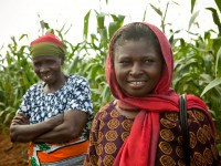 Mrs. Anna Mtambo (left) and Mrs. Sharifa Mumbi (right) stand in a Tanseed demonstration field in Morogoro, Tanzania.  These women's crop yields have increased dramatically since they began purchasing maize seed from Tanseed.  Tanseed, an AGRA grantee, provides high quality maize, sesame, and sunflower seeds, as well as training in proper agricultural techniques, to small farmers in over a dozen surrounding districts.