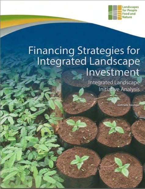 Financing ILI Analysis