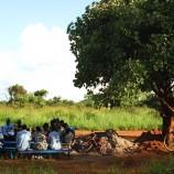 Gathering under the mango tree