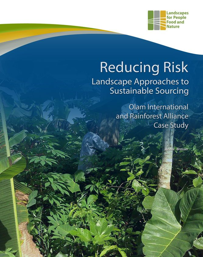 Olam Cover Image