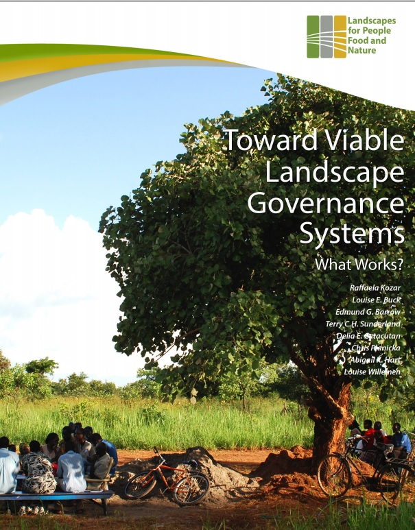 governance cover