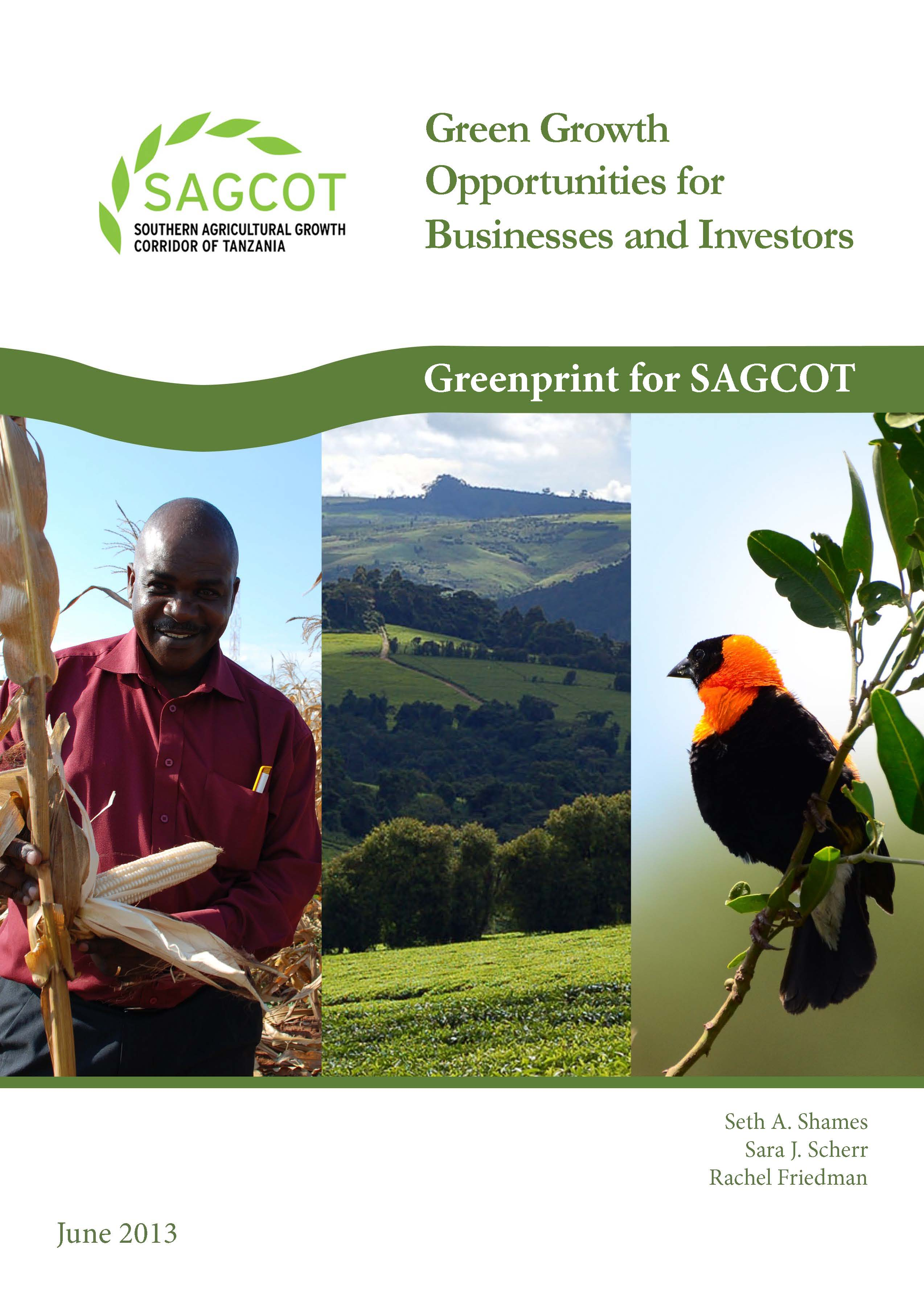 AGG Opportunities for Businesses and Investors - Greenprint for SAGCOT (June 2013) Cover_Page_01