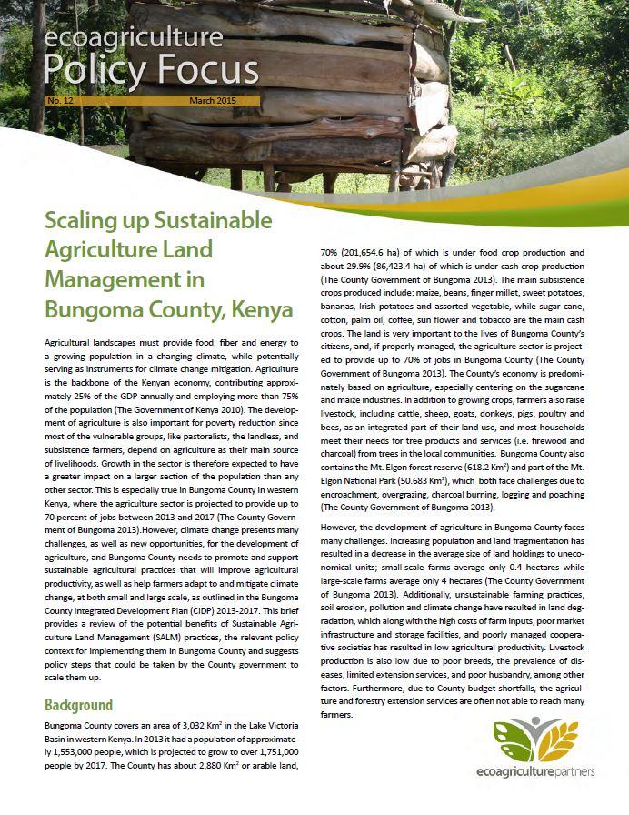 Bungoma Brief Cover