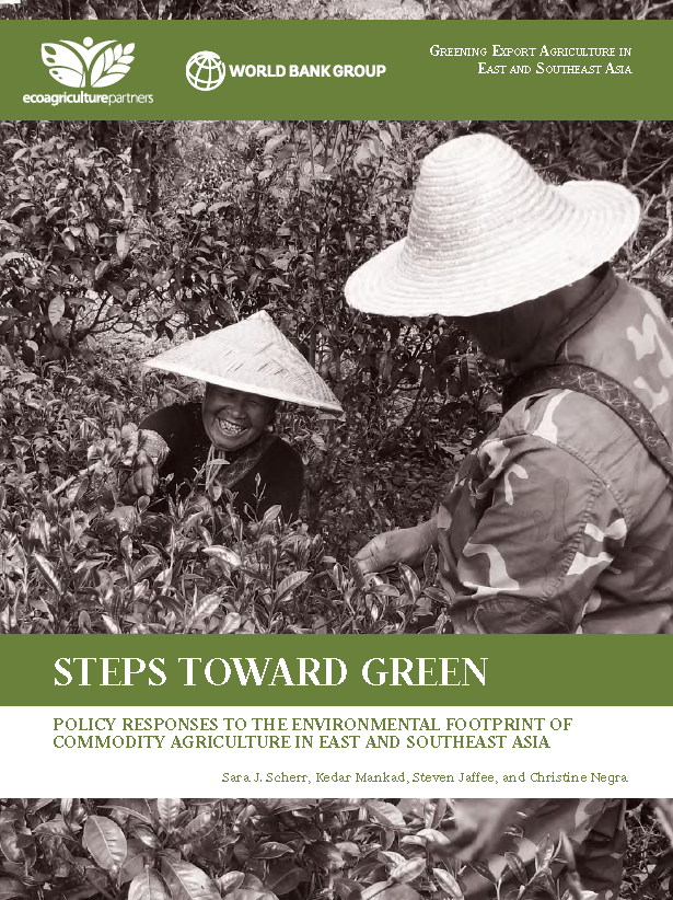 EASER Steps Toward Green Cover Image