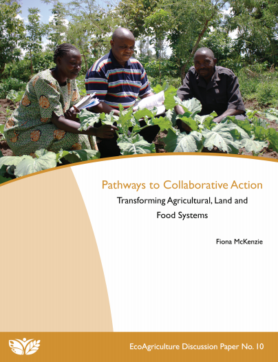 Pathways to Collaborative Action DPno10 cover