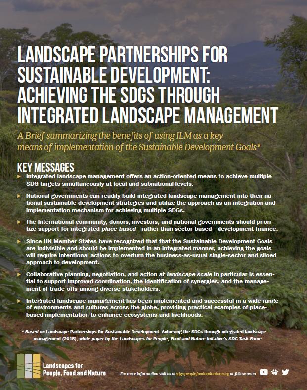 SDG White Paper brief snapshot