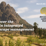 African Landscapes Dialogue Ethiopian Sunflowers in Tigray - Alan Davey