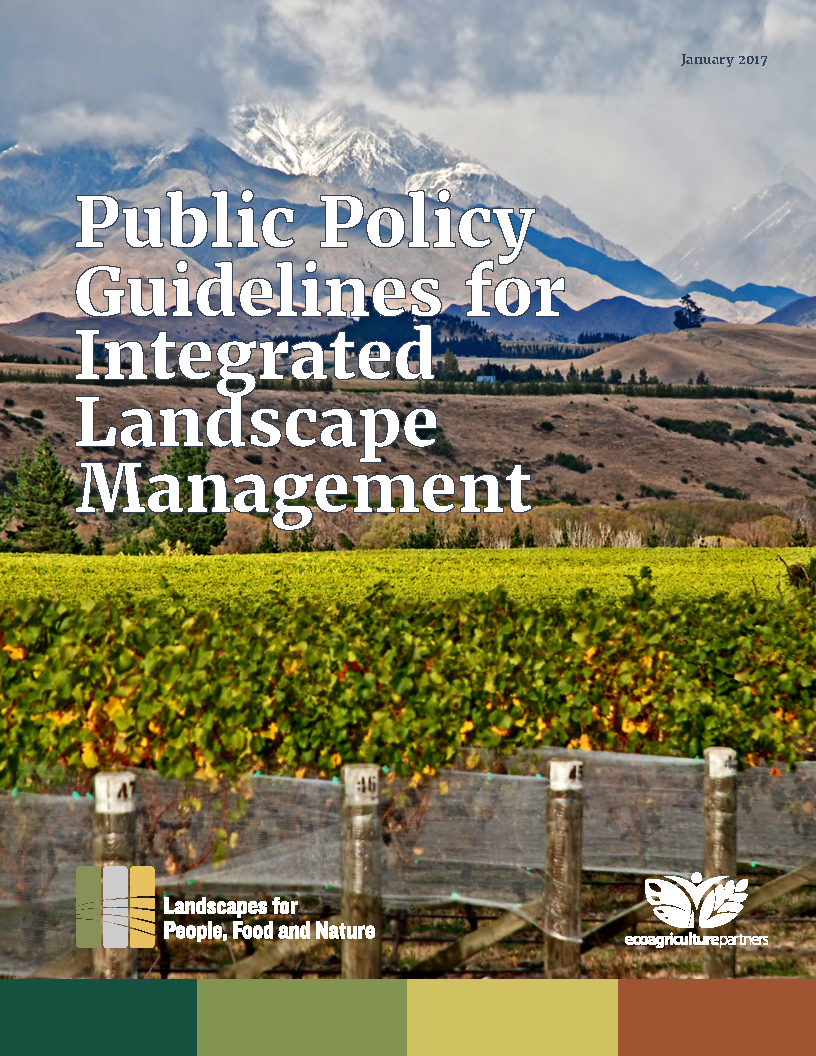 Cover of Public Policy Guidelines for ILM January 2017 Final