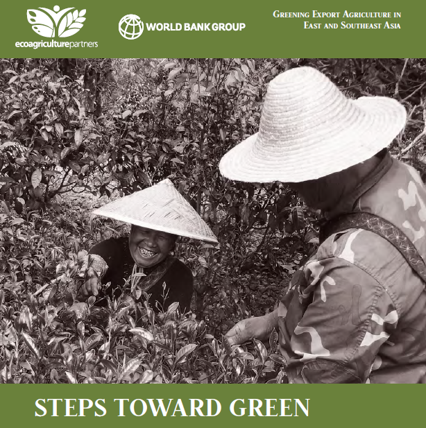 Steps Toward Green cover page