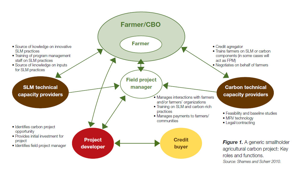 The key roles and functions of a generic smallholder agricultural carbon project.