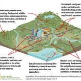City Region Landscape Diagram