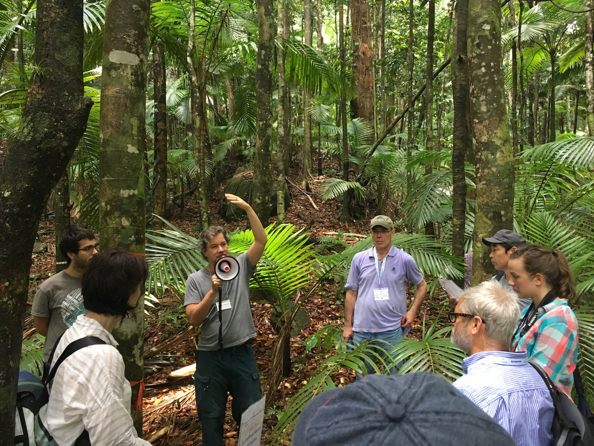 Foresters in El Yunque National Forest